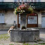 La Fontaine Place Delille