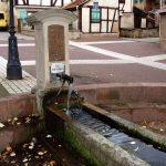 La Fontaine Marie Hart