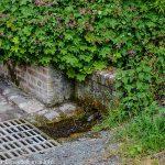 La Source et le Lavoir de Burelles