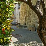 La Fontaine Place M.Mauron