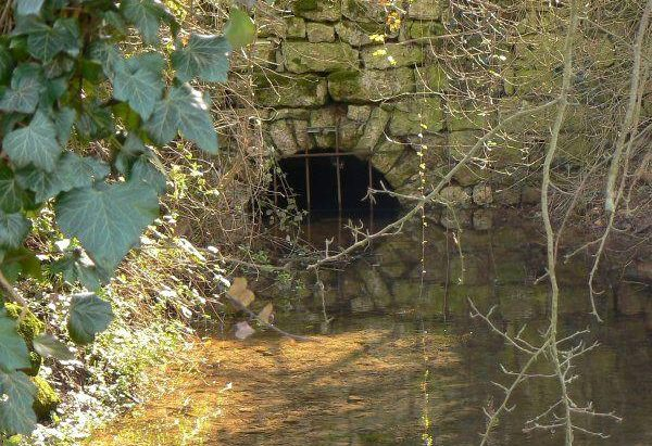 La Fontaine de Viré