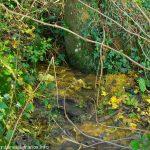 La Fontaine Sucrée