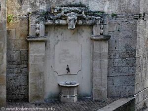 La Fontaine rue des vieilles boucheries