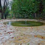La piscine de la Fontaine de N-D de Tonneteau
