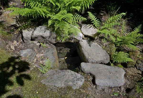 La Fontaine Saint-Martin de Genouillas
