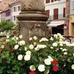La Fontaine Saint-Thiébaut