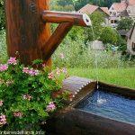La Fontaine du Lynx