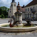La Fontaine des Cygnes