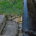 Point d'accès au canal