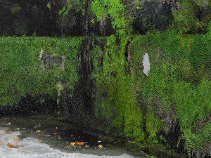 La Fontaine des Grottes St-Antoine