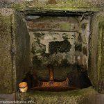 La Fontaine Ferrugineuse