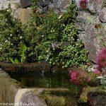 La Fontaine du Chanoine Bénazech