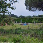 La Fontaine des Planches Landelles