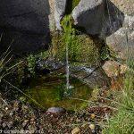 La Fontaine du Yunig