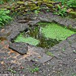 La Bonne Fontaine de la Châtaigneraie