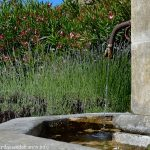 La Fontaine route de Tulette