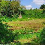 Les Fontaines de la Clarté