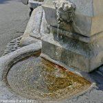La Fontaine du Portail Neuf