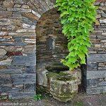 La Fontaine du Presbytère