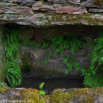 La Fontaine du Hameau d'Echirpeau