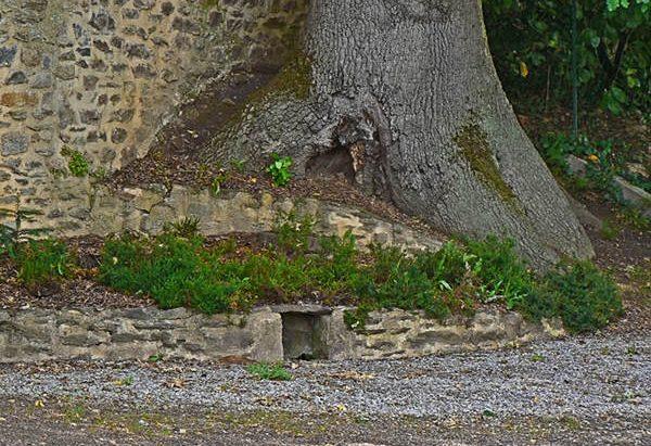 La Fontaine Saint-Victurnien