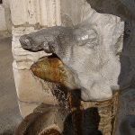 La Fontaine du Sanglier