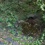 La Fontaine Ste-Sardine