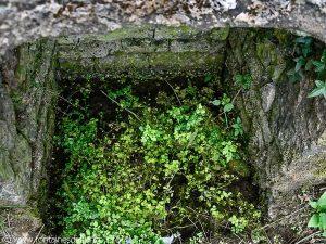 La Fontaine dite du Font Pion