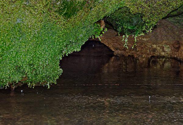 La Grande Fontaine ou Fontaine de La Roche
