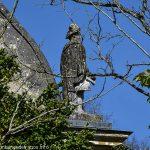 Statue décorant l'un des angles de la toiture